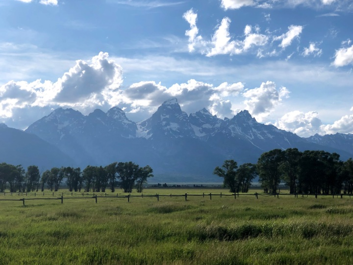 Yellowstone, Grand Tetons + Jackson Hole Diary