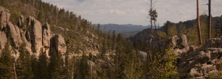 Black Hills + Custer State Park // SouthDakota
